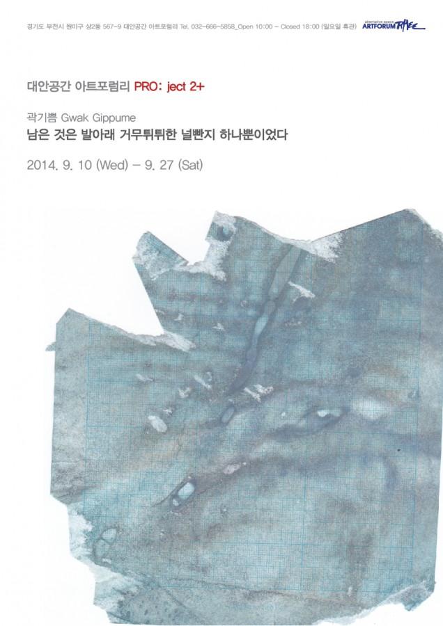 곽기쁨웹자보 최종