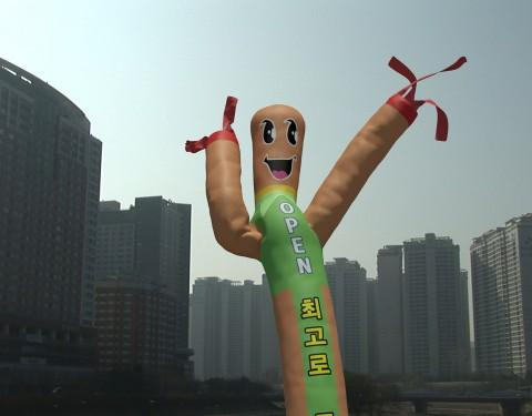 전수현 < Sky Dancer >