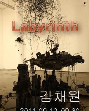 김채원 <Labyrinth >