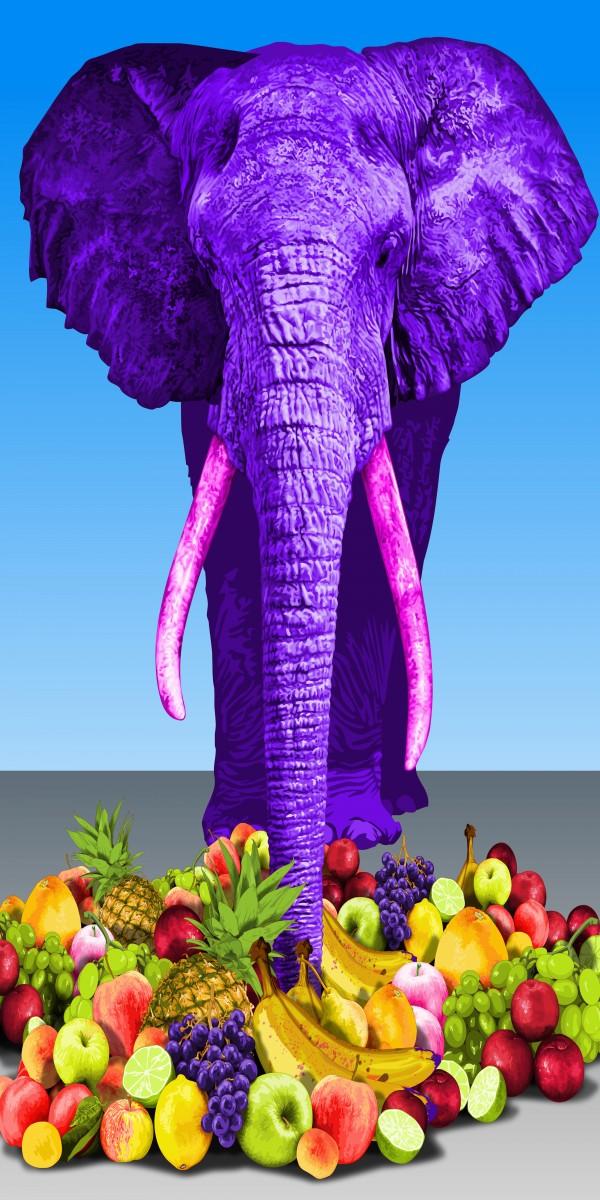 animal series-elephant, mixed media, 60x120cm, 2014